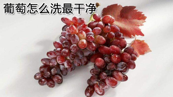 葡萄怎么洗最干净