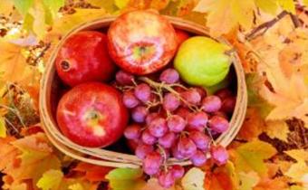 吃完葡萄可以吃苹果吗 葡萄和苹果可以煮熟吃吗