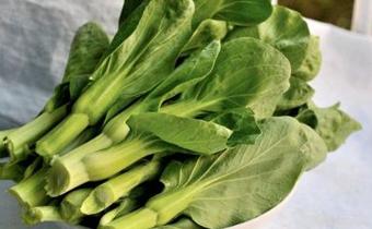 白菜苔和什么一起炒好吃窍门 吃白菜苔有什么功效和作用