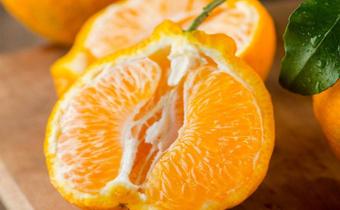丑橘为什么那么甜 丑橘的热量是多少