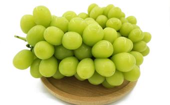 日本香印青提为什么这么贵 香印青提葡萄是转基因的吗