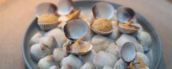 孕妇一点蛤蜊都不能吃吗 常吃蛤蜊对身体有何不利影响