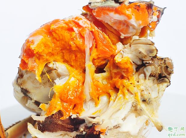 为什么死掉的大闸蟹不能吃 大闸蟹刚死就不能吃吗1