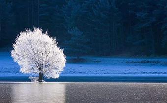 2019年霜降在哪一天 霜降之后就是冬天了吗