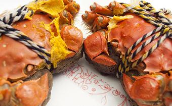 冰冻的大闸蟹能不能吃 冻过的大闸蟹还能吃吗