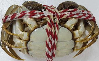 大闸蟹毛蟹用绳子怎么绑 怎么绑大闸蟹