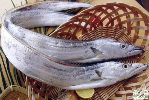 带鱼用不用刮鳞 带鱼怎么清洗1
