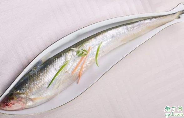 带鱼用不用刮鳞 带鱼怎么清洗4