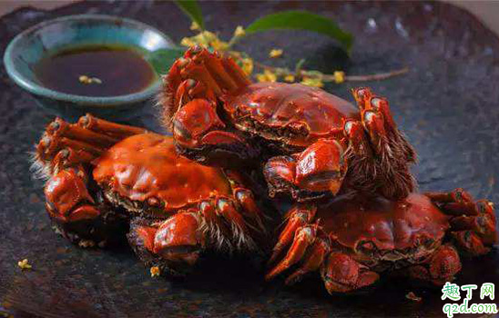 大闸蟹和梭子蟹哪个味道好 大闸蟹肉多还是梭子蟹肉多1
