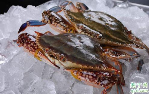 大闸蟹和梭子蟹哪个味道好 大闸蟹肉多还是梭子蟹肉多3