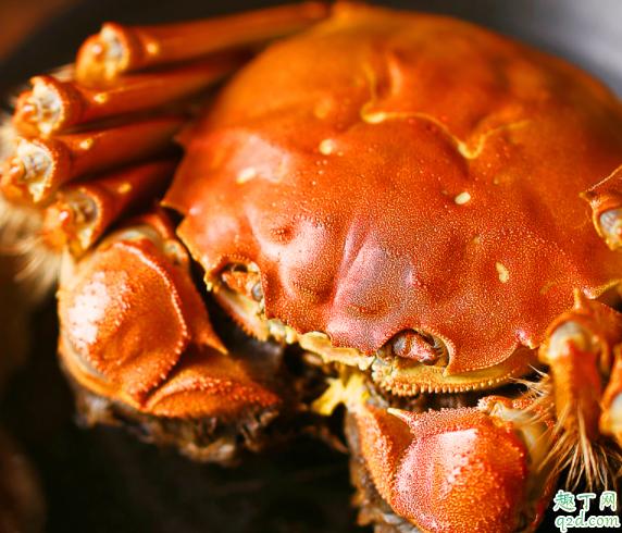阳澄湖大闸蟹和普通大闸蟹吃的出来吗 阳澄湖大闸蟹和普通螃蟹的区别2