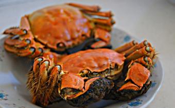什么样的大闸蟹肉多 怎么看大闸蟹肉多肉少