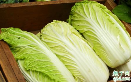 白菜喷醋可以驱虫是真的吗 白菜喷醋提高产量有什么说法2