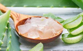 家养的芦荟能不能吃 芦荟的吃法有哪些
