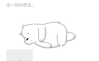 抖音朋友圈躺着的熊怎么发 抖音躺在朋友圈的熊图片分享