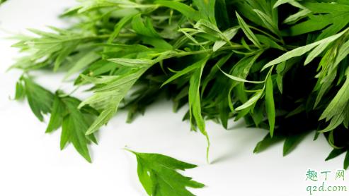 艾叶艾草是同一种植物吗 艾草和艾叶怎么区分2