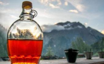 砂糖桔可以酿酒吗 用砂糖橘怎么酿酒好喝