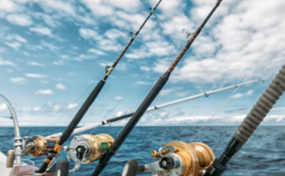 入门级鱼竿哪个牌子好2019 新入手的鱼竿怎么检查