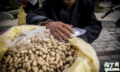 2019花生米的价格是多少 11月花生米会涨价吗1