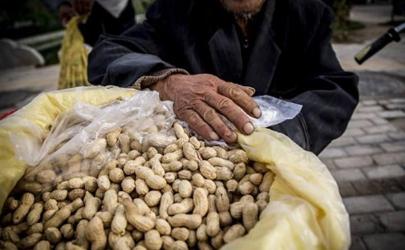 2019花生米的价格是多少 11月花生米会涨价吗