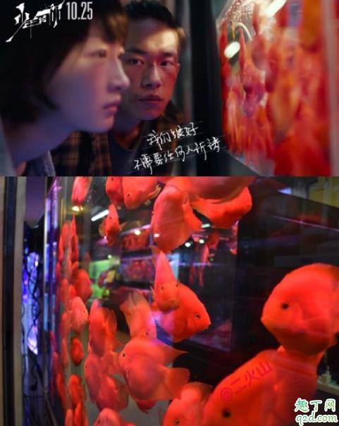 少年的你取景地在重庆哪里拍的 少年的你重庆取景地打卡攻略16