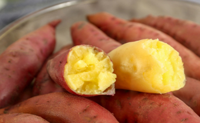 红薯制饵料怎么钓鱼 红薯饵料制作方法
