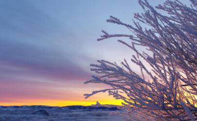 冬至中暖烘烘什么意思 冬至中暖烘烘代表了什么
