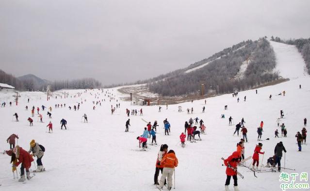 神农架滑雪场哪个性价比高 神农架滑雪去哪里比较好3