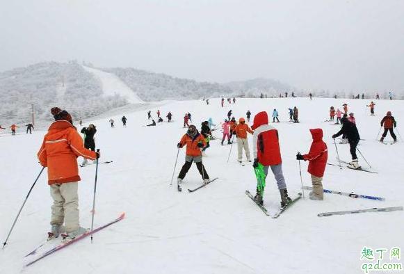 神农架滑雪场哪个性价比高 神农架滑雪去哪里比较好2