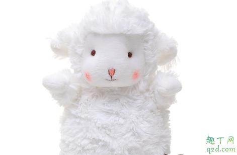 网红小羊玩偶在哪买 网红小绵羊bunnies多少钱3