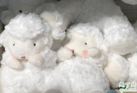 bunnies羊正版多少钱 bunnies羊怎么火的3