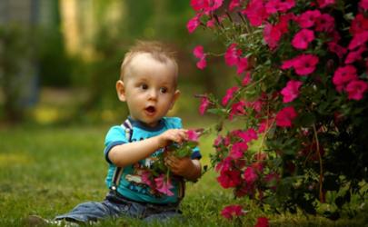 新生儿鼻子堵会严重吗 小孩堵鼻子怎么办