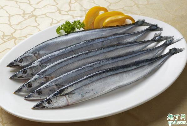 为什么刀鱼这么贵 刀鱼和带鱼一样吗1