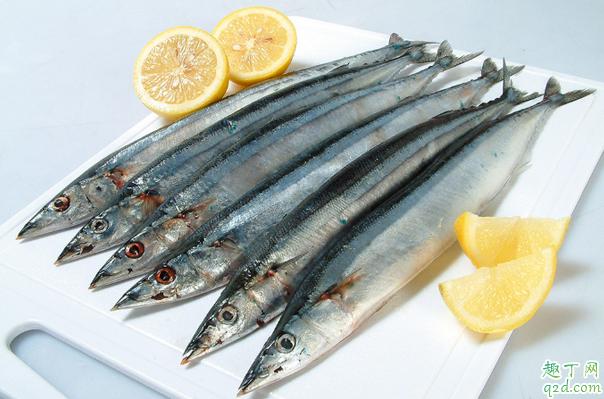 为什么刀鱼这么贵 刀鱼和带鱼一样吗3