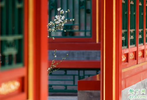 2020年春节假期故宫开放吗 2020年春节故宫免费吗3