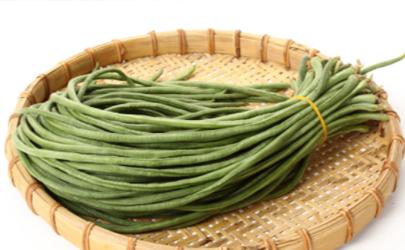 大棚种植豇豆如何通风 豇豆成熟采收要注意什么
