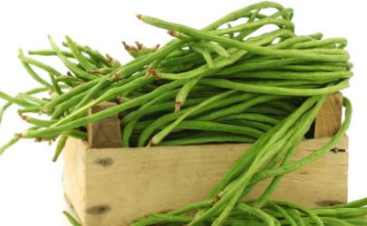 豇豆耐不耐冻 豇豆种植如何防止倒春寒