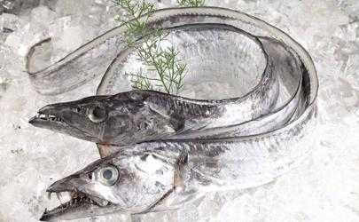 带鱼段为什么比带鱼便宜 超市里的带鱼段为什么那么便宜