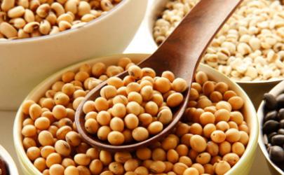 种大豆土壤板结怎么办 大豆适合干旱土壤吗