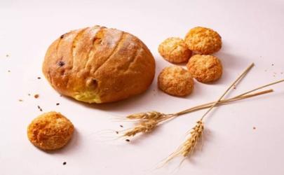 酸奶做面包会酸吗 酸奶做面包能起到松软吗