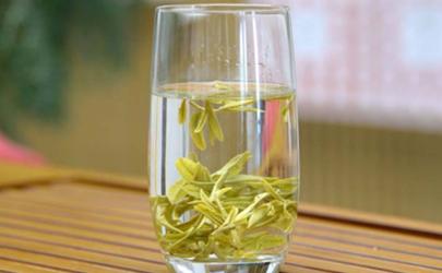 龙井茶可以用紫砂壶泡吗 龙井茶叶陈了还能喝吗