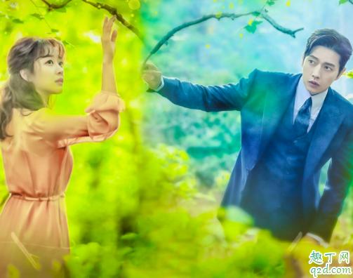 韩剧Forest是喜剧还是悲剧 韩剧Forest免费观看百度云资源2