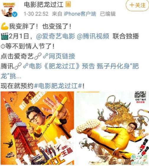甄子丹肥龙过江提档到什么时候上映 肥龙过江爱奇艺网播免费吗5