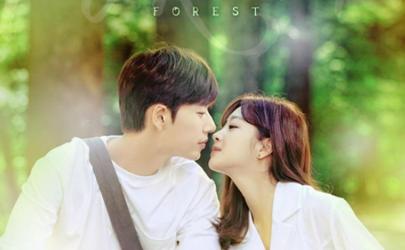 韩剧Forest是喜剧还是悲剧 韩剧Forest免费观看百度云资源