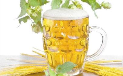 啤酒可以浇花吗 啤酒适合浇什么植物