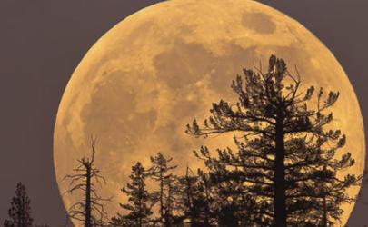 4月8日将出现年度最大满月是真的吗 2020年超级月亮时间