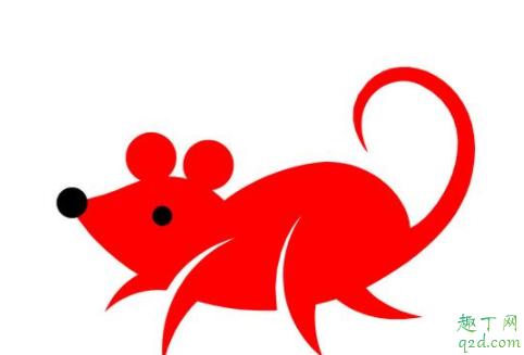 鼠年发生的大事件有哪些 历史上鼠年发生的灾难盘点5