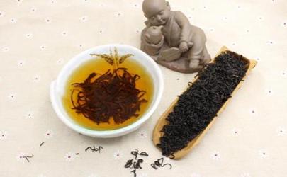 祁红香螺怎么冲泡 祁眉红茶和祁门红茶怎么区分