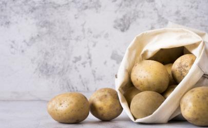 种植大土豆的秘诀是什么?掌握这些土豆个大绝对不在话下