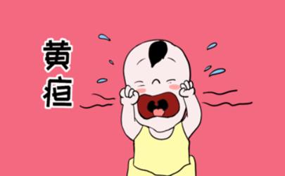 怀孕吃橘子芒果多宝宝会黄疸?专家:完全两码事!